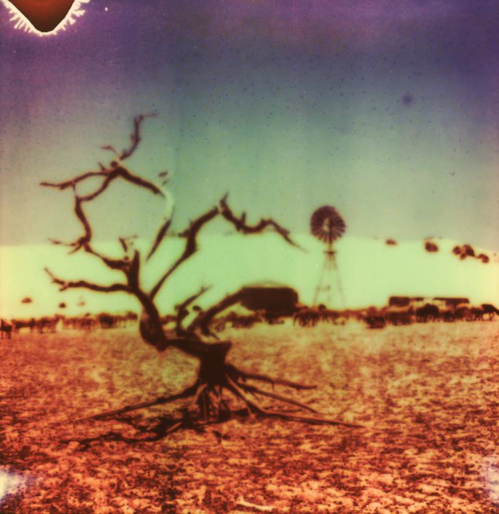Outback-Western-Australia-desert-road-trip-Andrew-Mackinnon-11